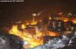 Kürtün'de Dal Oynasa Elektrik Kesiliyor