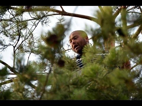 Adalet istiyorum dedi çam ağacına çıktı
