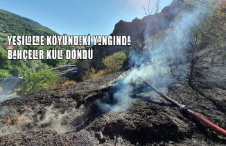 Gümüşhane'deki yangında bahçeler küle döndü