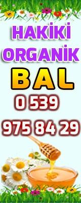 banner345